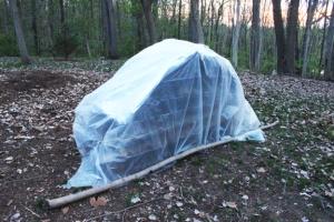 super-shelter-done